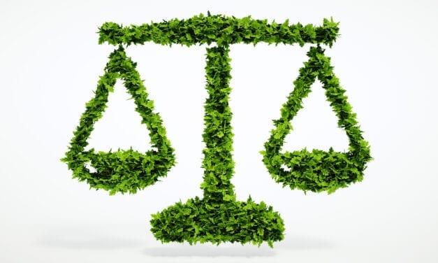 La función social del derecho ambiental