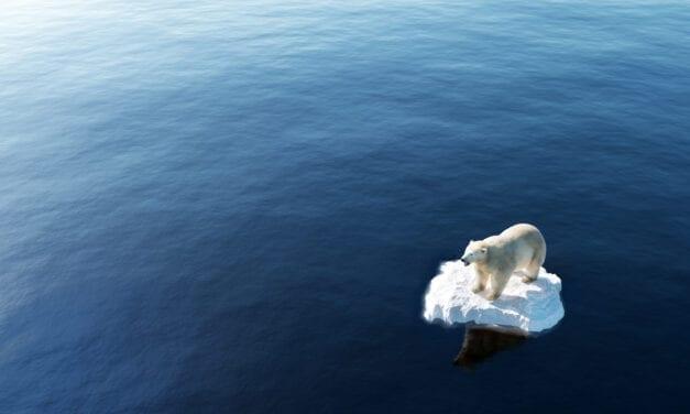 Cambio Climático y Covid-19:  las dos amenazas de la humanidad