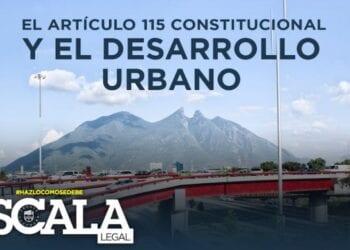 art 115 constitucional