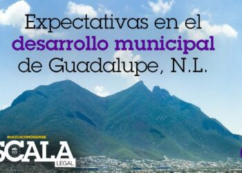 Expectativas en el desarrollo municipal de Guadalupe, N.L.